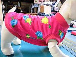 画像1: 春〜夏まで 女の子用布見本